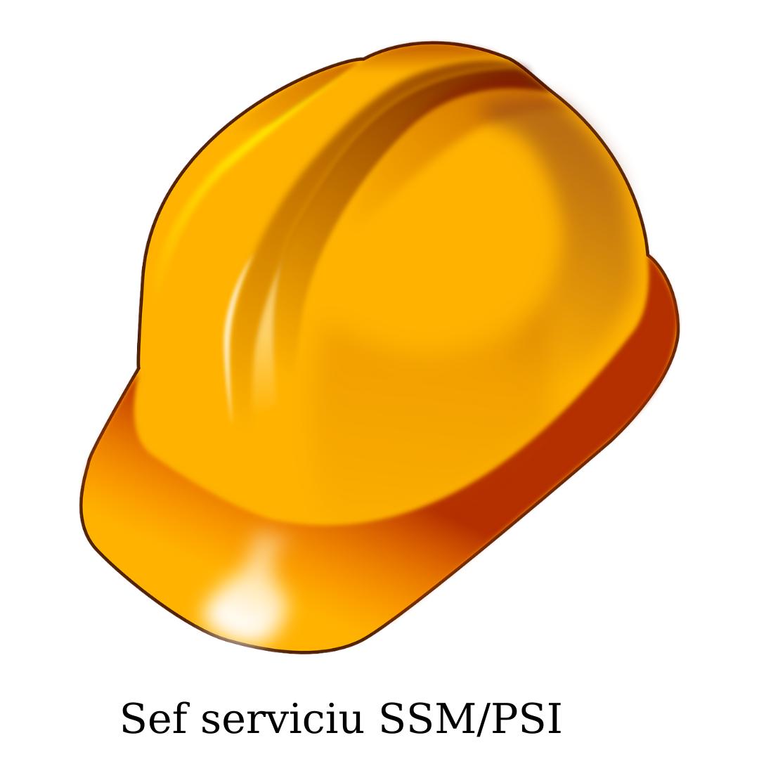 Șef serviciu SSM/PSI
